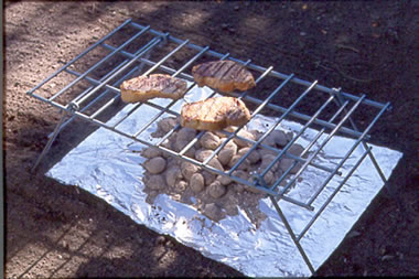 Dian Thomas Improvised Grills Create Your Own Grill